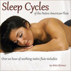 Sleep Cycles of the Native American Flute (Over an Hour of Soothing Native Flute Melodies)