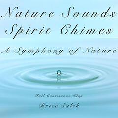 Nature Sounds and Spirit Chimes: A Symphony of Nature