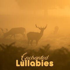 Enchanted Lullabies