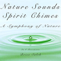 Nature Sounds and Spirit Chimes: A Symphony of Nature in 6 Movements