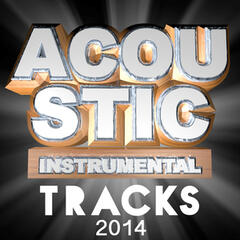 Acoustic Instrumental Tracks 2014