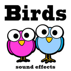 Birds Sound Effects Text Tones