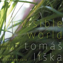 Invisible World