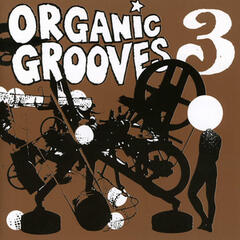 Organic Grooves 3