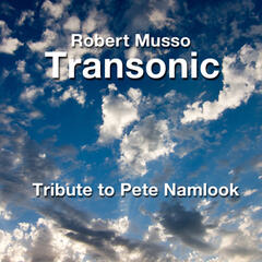 A Tribute to Pete Namlook (Live)