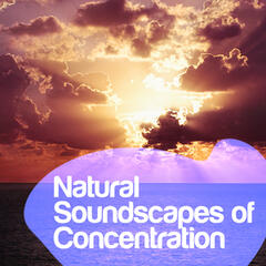 Natural Soundscapes of Concentration
