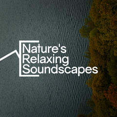 Nature's Relaxing Soundscapes