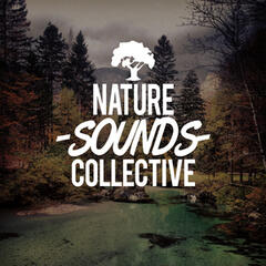 Nature Sounds Collective