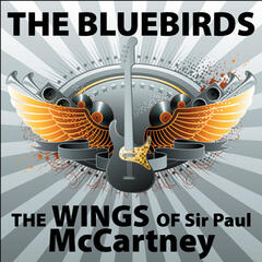 The Wings of McCartney