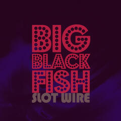 Big Black Fish