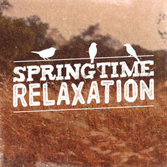 Springtime Relaxation