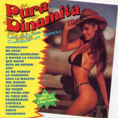 Pura Dinamita (Las Mejores Cumbias en Banda)