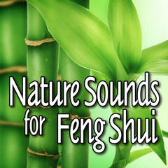 Nature Sounds for Feng Shui