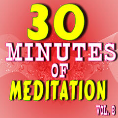 30 Minutes of Meditation, Vol. 8 (Special Edition)