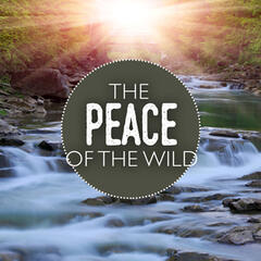 The Peace of the Wild