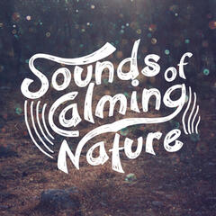 Sounds of Calming Nature