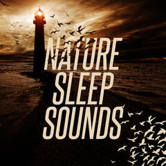 Nature Sleep Sounds