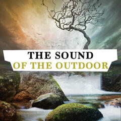 The Sound of the Outdoors