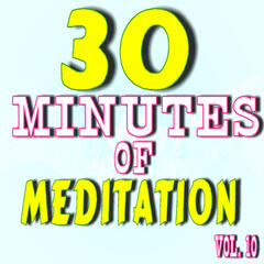 30 Minutes of Meditation, Vol. 10 (Special Edition)