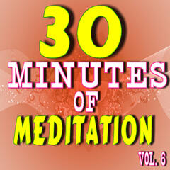 30 Minutes of Meditation, Vol. 6 (Special Edition)