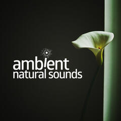 Ambient Natural Sounds