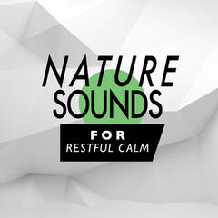 Nature Sounds for Restful Calm