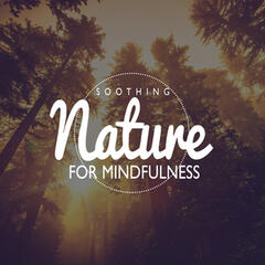 Soothing Nature for Mindfulness