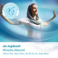 Miracles Abound: Meditations for Transformation