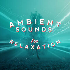 Ambient Sounds for Relaxation