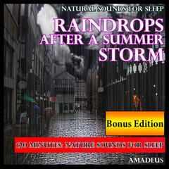 Natural Sounds for Sleep: Raindrops After a Summer Storm: Bonus Edition