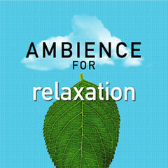 Ambience for Relaxation