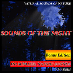Sounds of the Night: Natural Sounds of Nature: Bonus Edition