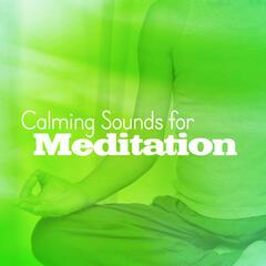 Calming Sounds for Meditation
