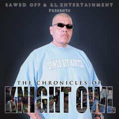 The Chronicles of Knight Owl