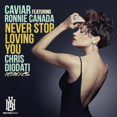 Never Stop Loving You (Chris Diodati Remixes)
