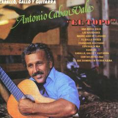 Caballo, Gallo y Guitarra