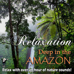 Relaxation Deep in the Amazon