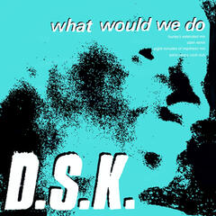 What Would We Do (Junior Boy's Own Mixes)