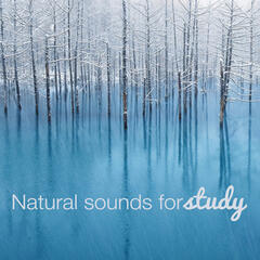 Natural Sounds for Study