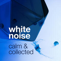 White Noise: Calm & Collected