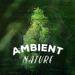 Ambient Nature