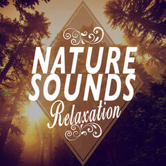 Nature Sounds Relaxation