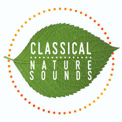 Classical: Nature Sounds