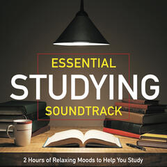 Essential Studying Soundtrack - 2 Hours of Relaxing Moods to Help You Study