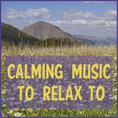 Calming Music to Relax to Featuring Zen Meditation, Deep Focus Music, & Relaxing Piano Music Consort