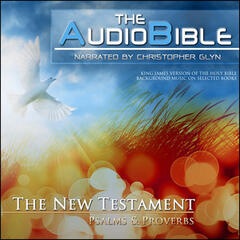 The New Testament - Mathew