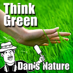 Think Green (Nature Sounds)