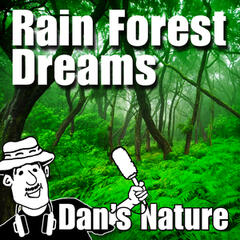 Rain Forest Dreams (Nature Sound with Music)