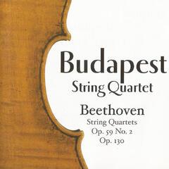 Budapest String Quartet, Beethoven