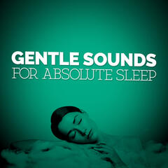 Gentle Sounds for Absolute Sleep